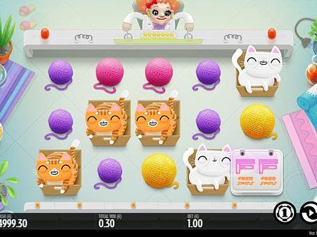 Призова комбінація на лінії в автоматі Not Enough Kittens
