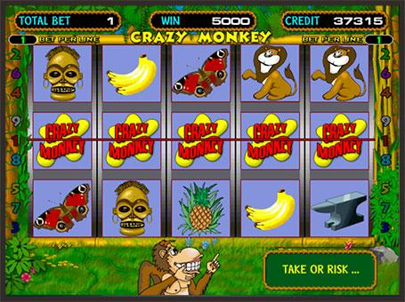 Максимальна виграшна комбінація в автоматі Crazy Monkey
