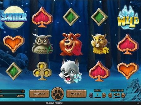 Символи Scatter і Wild в онлайн слоті Wolf Cup